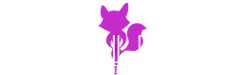 Purple Fox Band in Baltimore Maryland